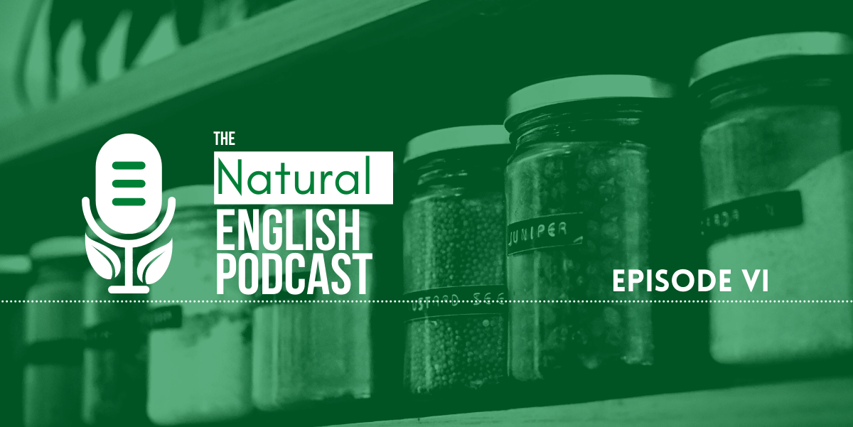 Episode VI: English & The Environment - Combating Plastic Waste